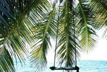 S u m m e r / Summer antics, beaches, pools, swimwear, nightlife & lifestyle