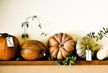 Autumn  / by Kate Sullivan