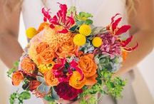 Vibrant and Colourful Weddings