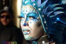 Carnaval 2016 Torrevieja / Carnaval de Torrevieja
