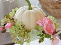 ♠ Autumnal Delights ♠