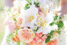 Flowers-n-Stuff / by Jen Dee Photography