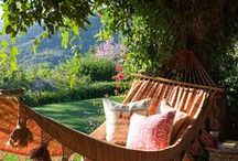 Outdoor Living / Beautiful yards, pools and outdoor areas