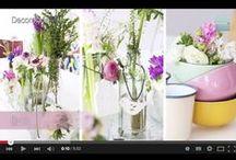 Plantas y flores / Variedades, sus cuidados y consejos para cuidar tus plantas. / by Micasa Decoración