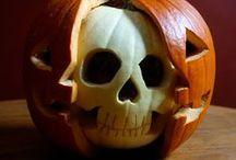 Halloween / by Jen Dee Photography