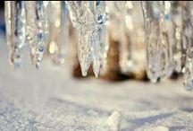 Winter / Beautiful winter scenes and decor