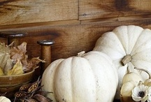Fall / Favorite fall images and decor