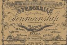 Typography / Vintage Typography