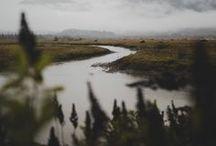 wilderness / forest | mountains | ocean | coast | nature