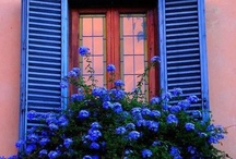 """Windows of opportunity / A smile is the light in your window that tells others that there is a caring, sharing person inside.""""-- Dennis Waitley / by Jennifer Henderson"""
