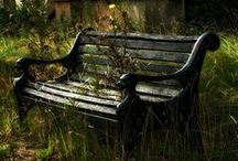 Abandoned Places / What time has Forgotten / by Trish Rademacher