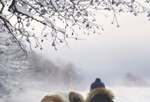 Winter ❤️❤️❤️