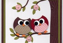 Owl Collection / by Jen