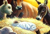 Unto Us a Child is Born / Jesus Christ is Born! / by Cynthia Reece