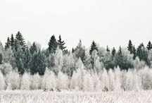 aes → winter