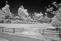 Infrared Photography / Clay Wieland Photography, specializes in Infrared Photography / by Clay Wieland Photography