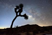 Milky Way Galaxy / by Susan Johanson