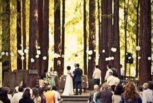 Wedding-wrzucone wszystko jak leci
