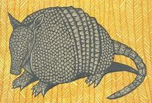 Armadillos, Anteaters, Aardvarks, Pangolins & Sloths / by Laurie Zeiden