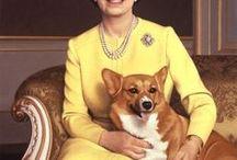 R-ROYAL - PETS / pets, royalty