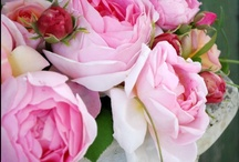 Floral / Bread feeds the body, indeed, but flowers feed also the soul.  The Koran