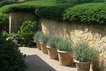 Garden / cultivation of fruits, vegetables and herbs etc.