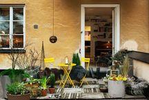 garden & backyard / by Petronella Stenfelt