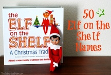 Elf on the Shelf / by Beth Hauck