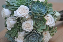 Wedding Flowers / by Jenny Brewer