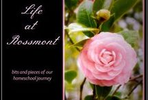 Life at Rossmont Blog / Sharing posts from my blog here