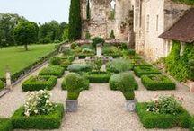 The Garden / by Kathryn Bouchard Senkow