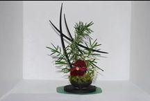 Floral Arranging/Designs / by Judy Renshaw Burton