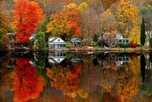 Autumn / by Terry Schartz