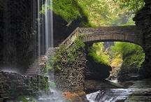 Bridges / by Terry Schartz