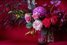 floral / wedding flower inspiration