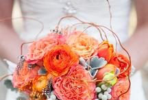 Orange Bouquets (peachy too)
