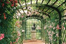 Secret Garden / Gardens I wish were in my backyard / by Victoria McGinley