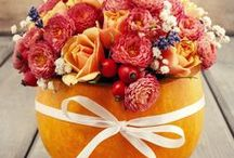 Fall Inspiration / Pumpkins, leaves, warm drinks and snuggling- getting ready for the Fall season.