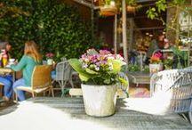 Gastrobares Salvador Bachiller / Te enseñamos mejores cócteles y platos de nuestro salón de té y terraza