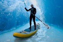 swim, surf, sup.