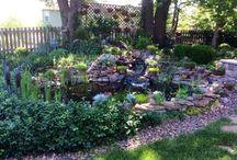 Backyard ponds / by Janice Powell