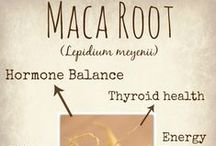 Superfood / Powerful ingredients to boost your health
