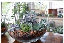Home Hacks / Home/house decor and hack ideas that is practical.