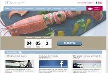 Webdesign Site  / Toutes nos créations graphiques de sites internet, réalisées par le pôle Webdesign de Ouest Online