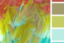 Color Trends | Feathers / Color Trends from The Feather Place and Beyond! Our favorite feather color combos all in one place!