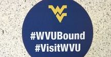 Tour WVU / Take a tour with us from the comfort of your own couch. (If you wanna see WVU in ALL of its glory, head to visit.wvu.edu to book a real tour!)