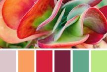 Interesting colors palettes