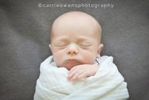 newborn inspiration / by Carrie Owens