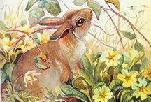 Spring Time / by Cathy Cline