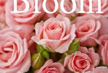 Bloom / Flowers  / by Kathy Rowerdink